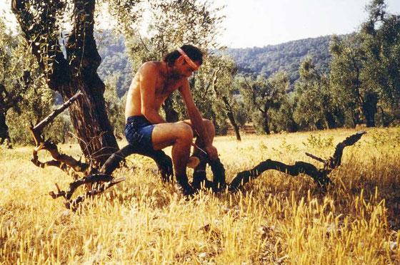 Olivenholzbeschaffung / Gargano Süditalien, 1989