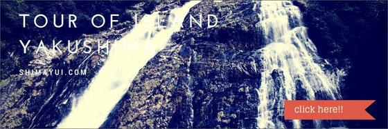屋久島,世界遺産,大川の滝,島巡り,島内観光,,滝巡り,ガイド,ツアー
