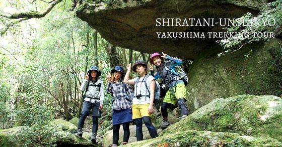 白谷雲水峡ツアー もののけ姫の森で。 太鼓岩、9月の屋久島
