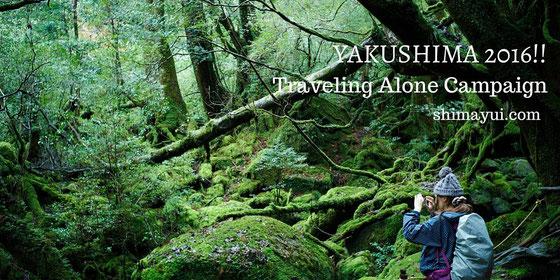 初めての屋久島、初めての一人旅におすすめの屋久島ツアープランはこちら