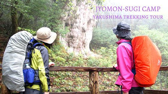 縄文杉と白谷雲水峡を1泊2日の山キャンプで歩く山旅ツアー,屋久島11月