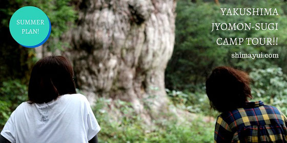 7/7スタート! 女性グループ特典付:縄文杉1泊2日キャンプツアー詳細はこちら
