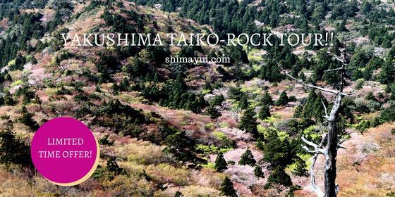 春のお花見トレッキングツアー受付中!白谷雲水峡・太鼓岩から絶景を♪4月まだ空きあり!