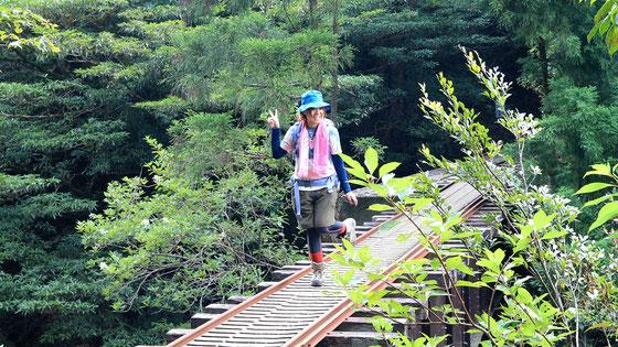 縄文杉からの帰り道。トロッコ道にて。女子旅(縄文杉ガイドツアー)