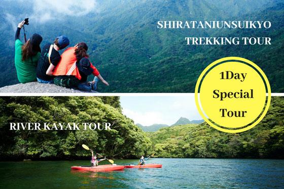 半日ツアー,屋久島半日過ごし方,白谷雲水峡,リバーカヤック,太鼓岩,もののけの森
