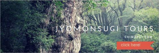 夏休み(7月、8月)の旅は、屋久島・縄文杉へ!まずはお問合せを!