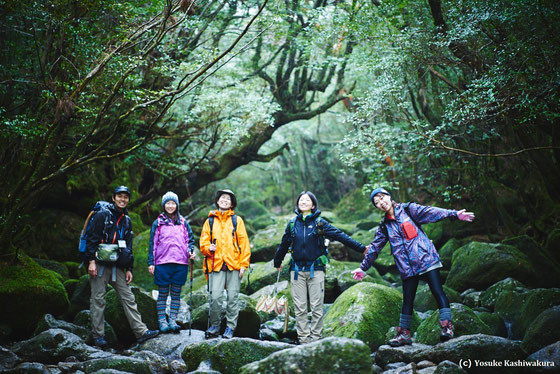 白谷雲水峡にて、苔の広がる森で。屋久島ヨガリトリート。