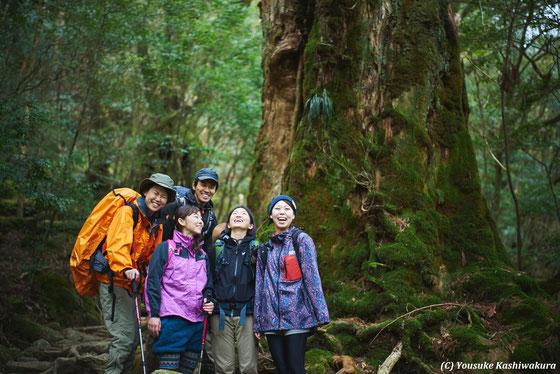 屋久島ヨガリトリート&白谷雲水峡(太鼓岩&もののけの森)2016年4月:もののけの森にて