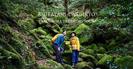 もののけ姫の森と絶景・太鼓岩へ行く、白谷雲水峡ガイドツアー。