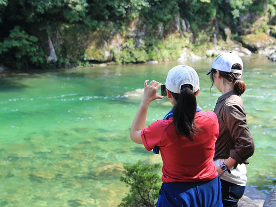卒業旅行にピッタリ,大学生プラン,縄文杉,白谷雲水峡,もののけの森,安房川,ガイドツアー