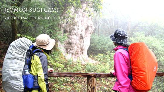 縄文杉と白谷雲水峡を1泊2日の山キャンプで歩く山旅ツアー