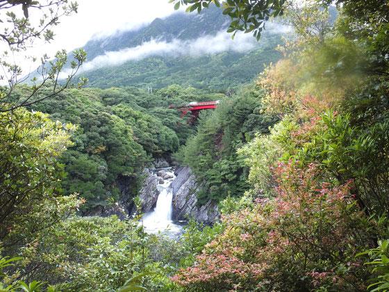 屋久島,トローキの滝,島巡り,