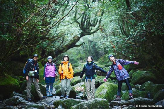 屋久島ヨガリトリート&白谷雲水峡(太鼓岩&もののけの森)2016年4月:白谷雲水峡・もののけの森