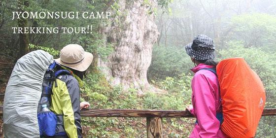 最新の「縄文杉1泊2日ガイドツアー(テント・山小屋泊/3食付き)」詳細はこちら。