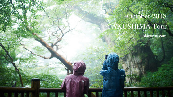 2018年10月の屋久島ガイドツアーの受付状況,縄文杉1泊ツアー,縄文杉日帰りツアー,白谷雲水峡