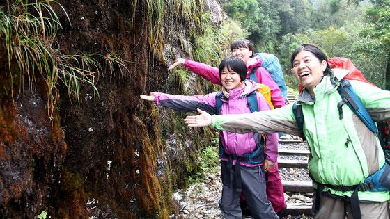 縄文杉,屋久島,貸切ツアー,女性ガイド,登山装備レンタル
