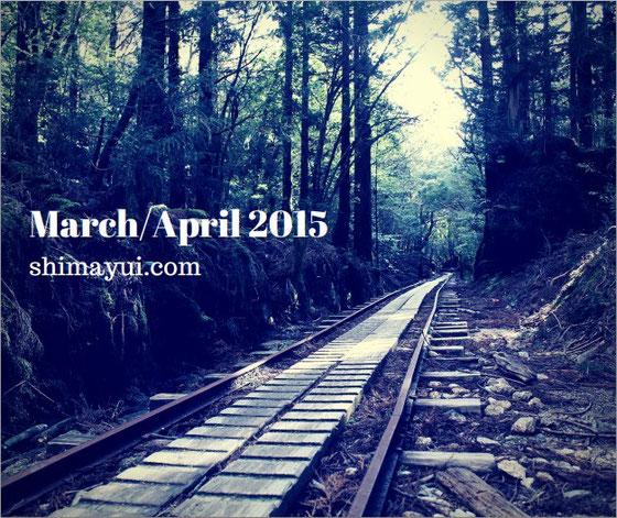 屋久島,屋久島3月,屋久島4月,屋久島GW,縄文杉,トロッコ道,一人旅,ガイド,ツアー