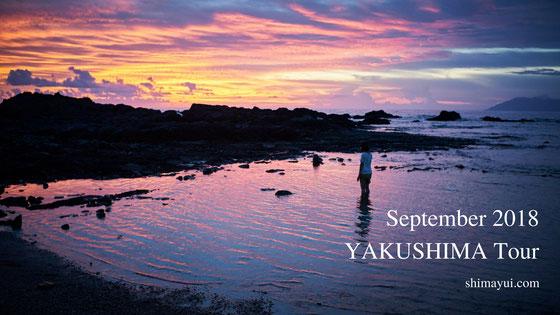 2018年9月の屋久島ガイドツアーの受付状況,縄文杉1泊ツアー,縄文杉日帰りツアー,白谷雲水峡
