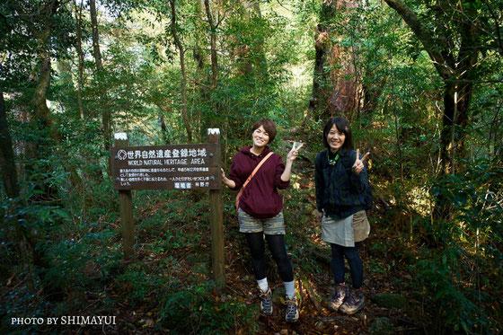 ここからついに世界自然遺産エリア(太忠岳ガイドツアー)