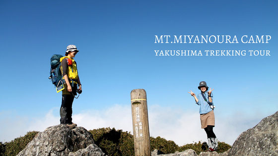 九州最高峰・宮之浦岳登頂&縄文杉、白谷雲水峡を巡る縦走ツアー,屋久島7月
