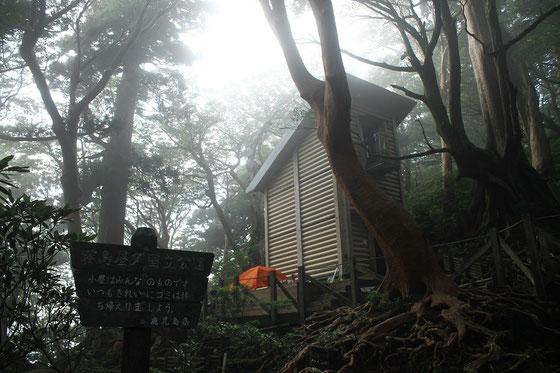 縄文杉から10分ほど歩いたところにある高塚小屋(縄文杉1泊2日ツアーの宿泊場所)