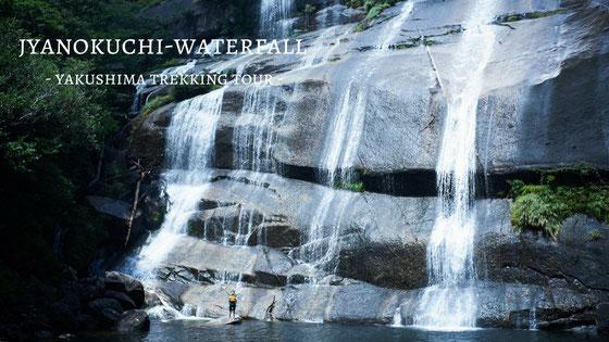秘境・蛇之口滝で、遊び尽くす,滝つぼで泳ぐ(蛇之口滝ガイドツアー)