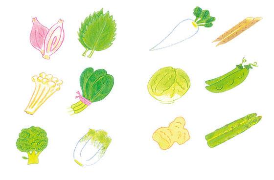食生活カレンダー 野菜図鑑コラム用