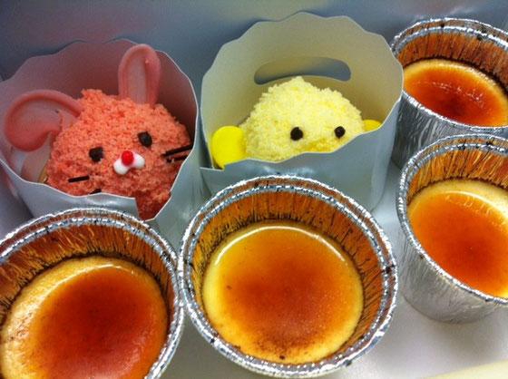 ウサギさんにヒヨコさん、、、、かわい過ぎっしょ!w 道上さんありがとうございました♪