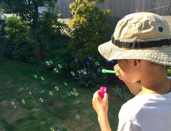 朝食も食べ終わり庭に出ようとすると、息子さんが「僕も庭にでるき待っちょいて!」って!? 珍しいと思ってたらシャボン玉を吹くためでした、、、庭木にがんがんシャボン玉がついてたけど大丈夫なんかな?