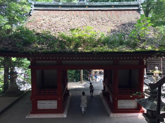 凄く大きな神社ではないけど、雰囲気出でまくりでオススメです♪