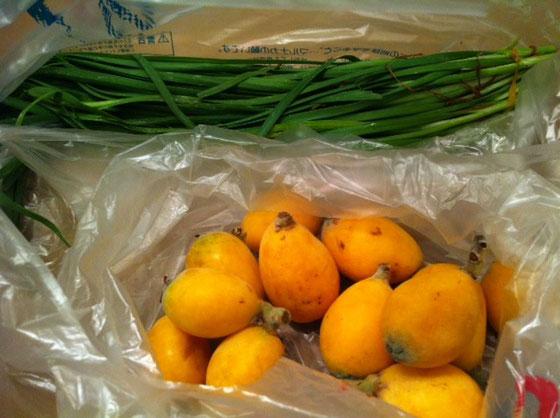 続くときはホント続く頂き物ですが、。 家庭菜園で収穫したニラとビワ。 どんだけ広い庭なんすかねw 野崎さんありがと言うございました。