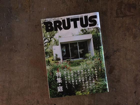 """いつも何かしら""""事""""を起こすとタイムリーについてきてくれる気がする♪ BRUTUS「庭」特集♪"""