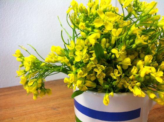 食用の菜の花を観賞用と間違えて活けてました、。 とりあえずつ込むと「うそ?!食べれんの? 花咲いてたから、、、でもビニール袋に入ってたからおかしいとおもったわ、。」だそうですw 」って、。 まぁ、なんでもアリだと思うけど、売り場的にもわわかりそうなもんだけど?w