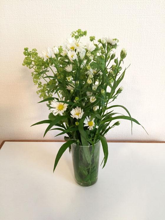 手前はガザニア、、後ろのはなんやろ? 家から歩いて2分の所に6時半から開いている年中無休の産直市があるんでしょっちゅう行ってます。激安で花が買えるんですよね~、、ハナショウブが70円、ガザニアが100円!