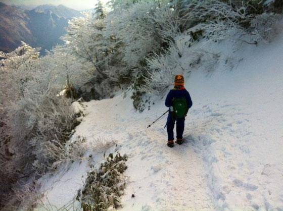 10時下山開始、、登り4時間、山頂10分、下り3時ってとこでしょうか、。