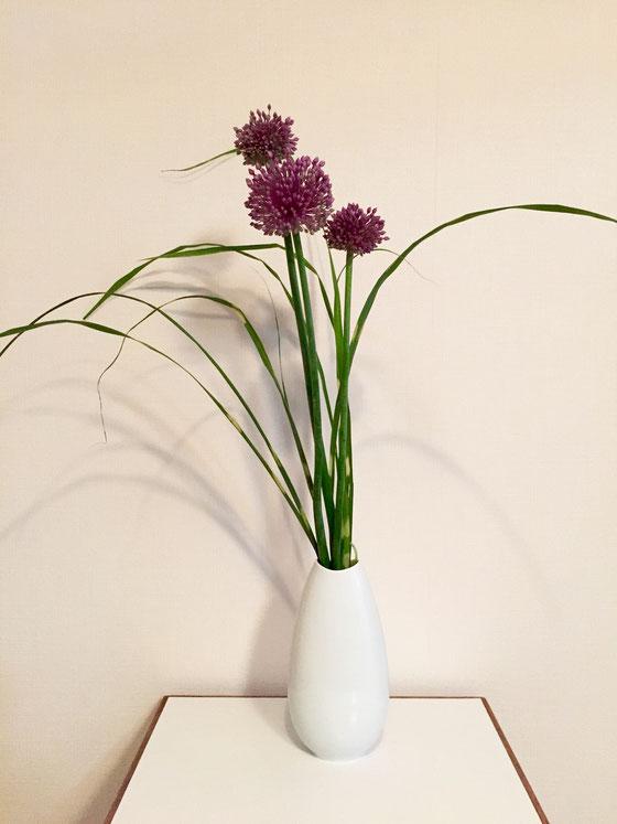 紫の花って案外多いんですよね~、。