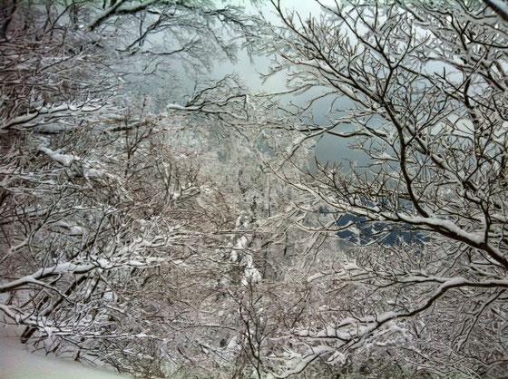 山頂には到達できなかつたけど、雪山超気持ちいよかった~♪ 次が楽しみ! 次は単独で行っちゃいたいと思ってます。
