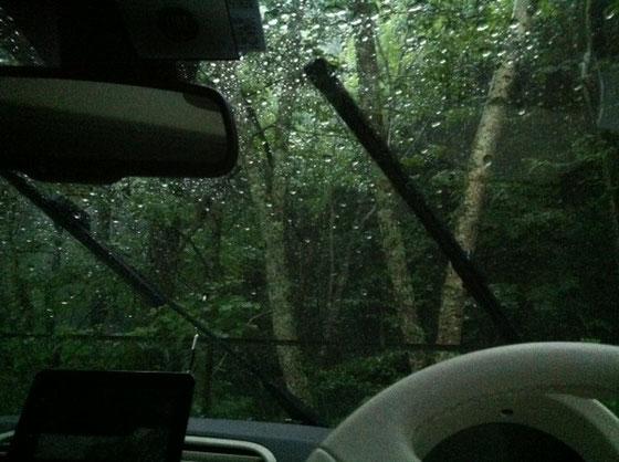"""登る予定だった燕岳ですが雨でお流れ、、、まあ天気予報見た時点で""""たぶん""""的な感じはあったんですけど後輩夫婦にも逢いたかったんで出発したんですけど~、、徳島に入った辺りから土砂降りで(汗) で結局長野まで止むことなく、、11時間の超ロングドライブ、、うち休憩した時間は全部で30分にも達してないんじゃないかな、、(滝汗) それにしてもこん~~~なに車に乗ってたことがないんで、ただただ疲れました!ww んで本来の目的を失ったんで、松本市内の観光にチェンジすることに♪"""
