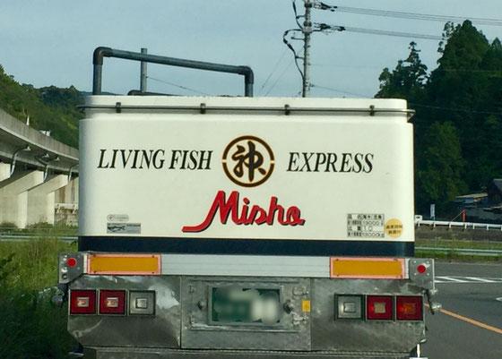 このトラックまんま活魚運搬車なんですけど、、、まあ雰囲気的にわかるけど、入ってこないな~w