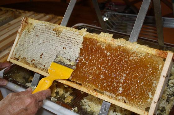 Honig Schleudern Im Badezimmer
