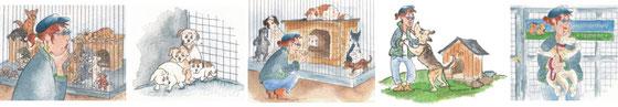 Tierheim Ungarn, Omi hat vier Hunde,