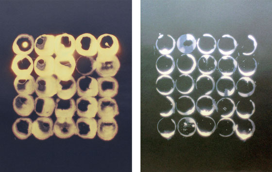 Toxic I, 2014. Dimensions 50cm x70cm et Toxic II, 2014. Dimensions 50cm x70cm