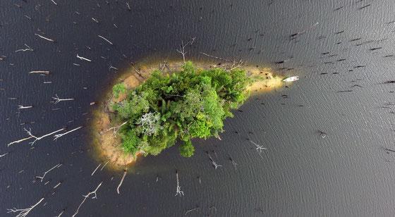 Tanguy's island, lac de Petit Saut.