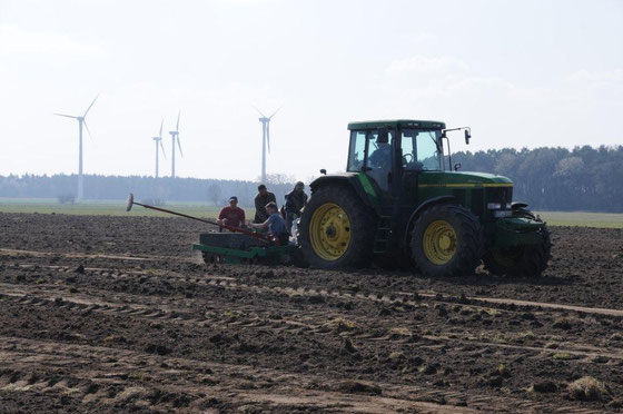 Gemeinde Massen legt die ersten 3 ha KUP zur eigenen Energieversorgung an