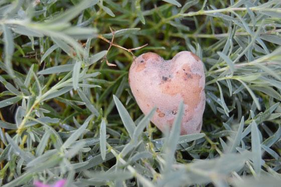 Bamberger Hörnla Herz