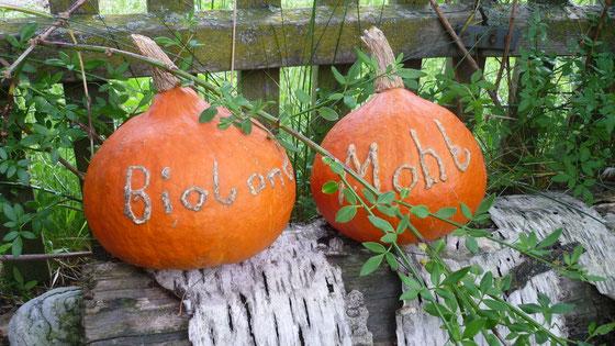 Hokkaido Herbststimmung
