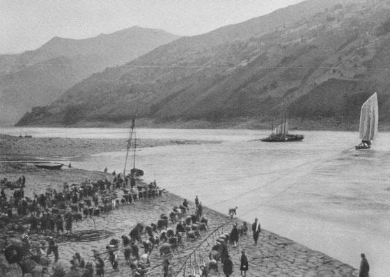 Remorquage d'une barque dans les rapides du Yang-tseu. Des centaines de haleurs sont nécessaires pour franchir certains rapides en amont d'Itchang.