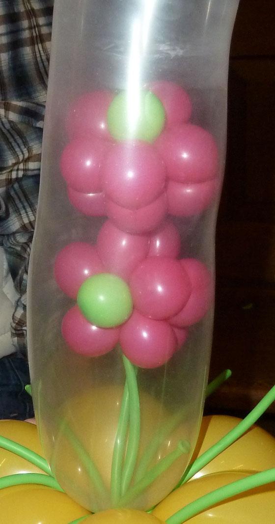 Mr.balloni. chBlumen im Ballon, Geburtstag, Geschenk, Gutschein, Präsent