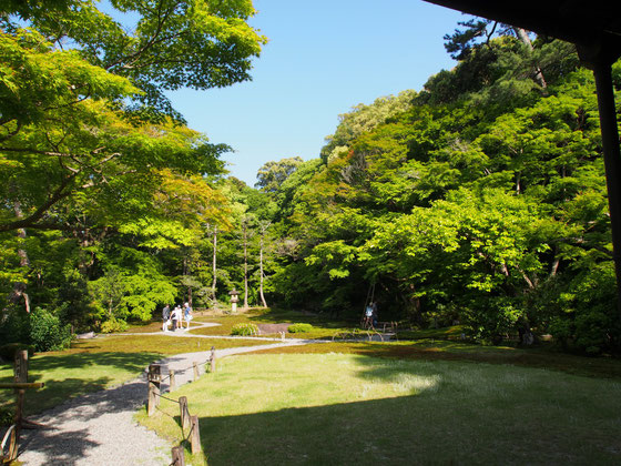 「依水園」の隣にあるもうひとつの美しい庭園 吉城園 京都観光タクシー英語通訳ガイド 永田信明
