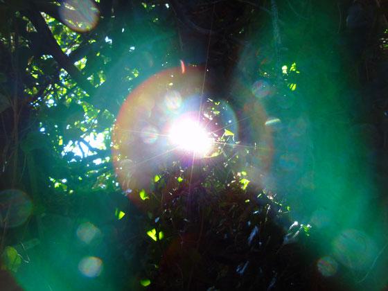 """©www.lichtwesenfotografie.com """"Kraft und Macht der Heilung"""""""